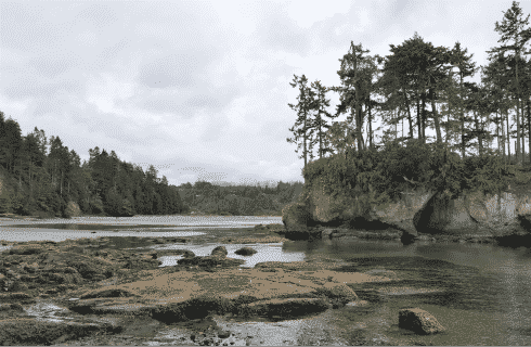 Wide, calm river going through a rocky and forested area with grey clouds above