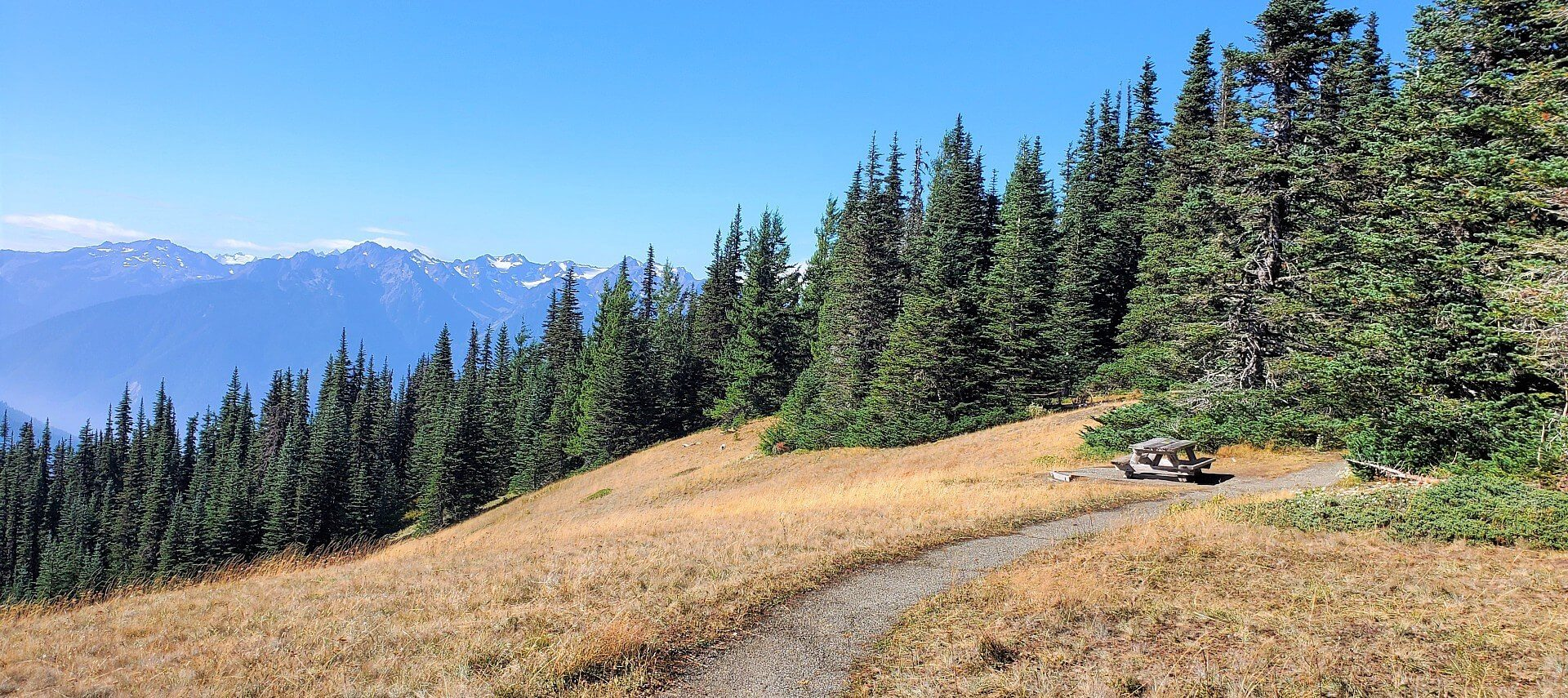 Gravel pathway at the top of a mountain with evergreen trees and snowcapped mountain range in the distance